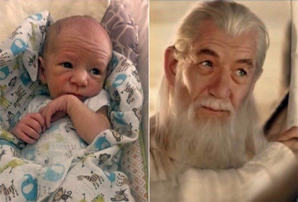 12 Babies & Their Celebrity Doppelgangers!
